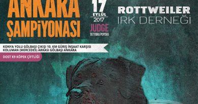 Rottder – Ankara Şampiyonası – 17/09/2017